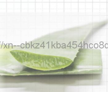 保湿効果のあるアロエベラエキス