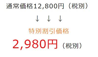 ディスコ(DICSO)の単品価格