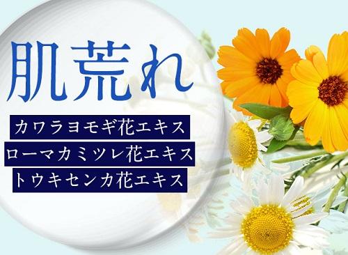 リグレ(REGRE)に含まれる成分カワラヨモギ花エキス