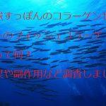琉球すっぽんのコラーゲンゼリーのフィッシュコラーゲンって何?効果や副作用など調査しました。
