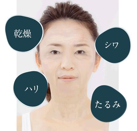 shimaboshiには乾燥・ハリ・シワ・たるみの悩みを解決してくれるたくさんの成分が配合されています